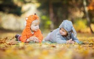 קייטנת חיות לילדים צעירים